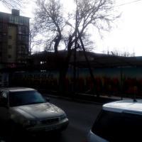 3. Фото жк на Шевченко, февраль 2015