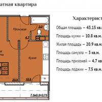 ЖК Триумф планировка 1-комнатная 43,15 кв.м.