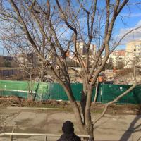 ЖК Горизонт в Анапе фото 2 от 10.01.18