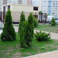 ЖК Владимирская-114 фото 10
