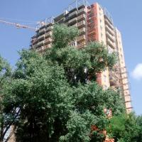 Новостройка ЖК Оранж 17.07.16 в Анапе, фото 2