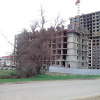 Фото 2 от 02.05.17 ЖК Кавказ Анапа