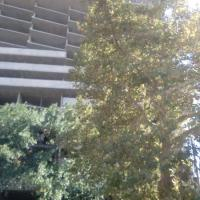 ЖК Лермонтово, фасад, начало октября 2015